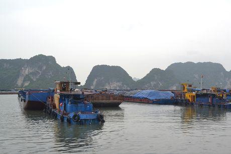 Bao so 7 cach Quang Ninh, Hai Phong 470km - Anh 4