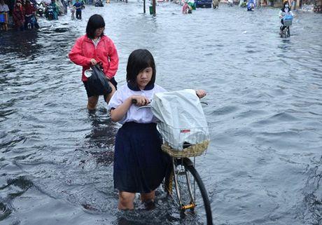 Con bao so 7: Quang Ninh cho hoc sinh nghi hoc tranh bao - Anh 1