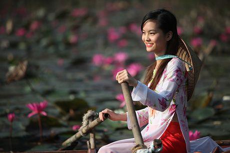 Hoa sung dep me hon tren dong suoi Yen - Anh 8