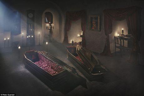 Lau dai Dracula mo cua cho khach vao ngu trong quan tai - Anh 3