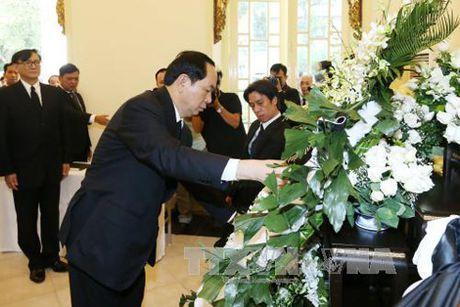 Chu tich nuoc Tran Dai Quang vieng Nha vua Thai Lan Bhumibol Adulyadej - Anh 1
