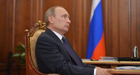 Tong thong Putin se den Berlin du cuoc gap 'Bo tu Normandy' - Anh 1