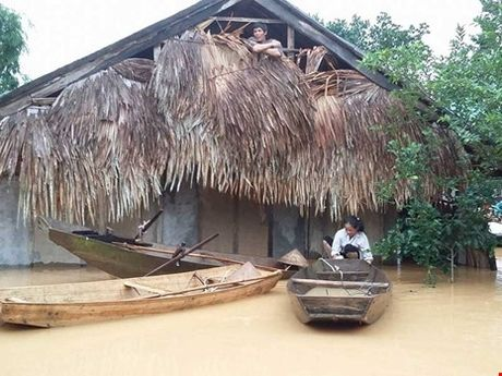 Pho Giam doc Thuy dien Ho Ho khang dinh xa lu ...dung quy trinh - Anh 1
