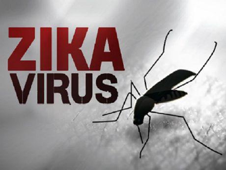 TP.HCM: Lan thu 2 cong bo dich Zika cap xa, phuong - Anh 1