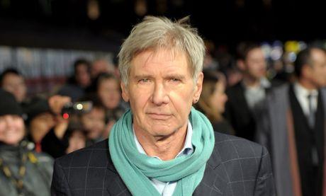 Disney bi phat 2 trieu USD vi lam gay chan Harrison Ford - Anh 1