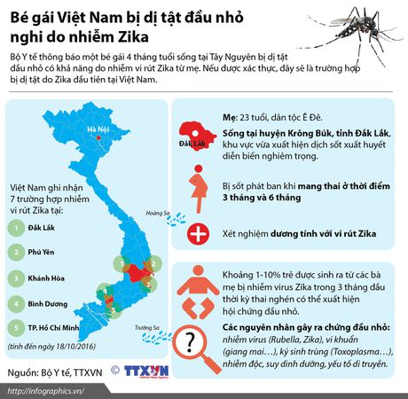 Be gai Viet Nam bi di tat dau nho nghi do nhiem Zika - Anh 1