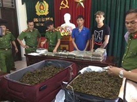 Pha chuyen an, bat 2 doi tuong van chuyen 40 banh can sa - Anh 2