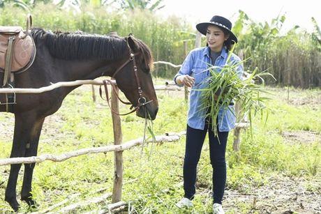 Lan dau cuoi ngua, Tieu Chau Nhu Quynh nga tray chan tay - Anh 4