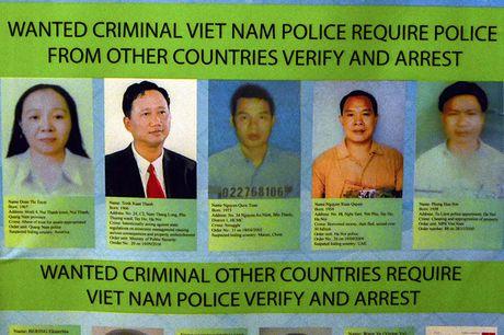 Nhieu quoc gia phoi hop truy bat Trinh Xuan Thanh - Anh 1