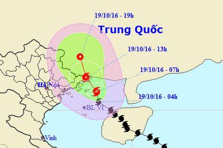 Bao Sarika suy yeu nhanh, do bo Quang Ninh - Anh 1