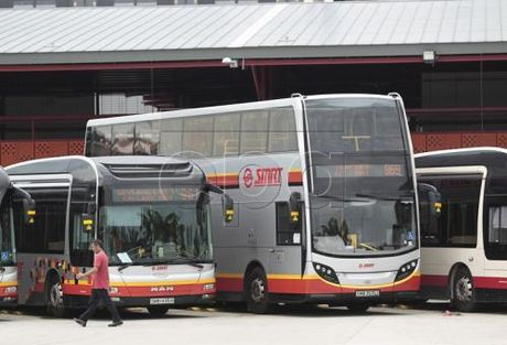 Singapore thu nghiem xe buyt khong nguoi lai - Anh 1