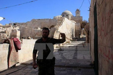 Syria: Lenh ngung ban tai thanh pho Aleppo bat dau co hieu luc - Anh 1