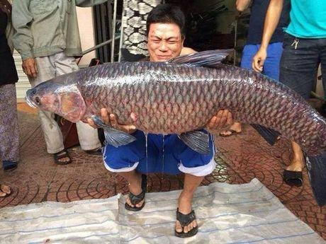 Nhung mon ngon dac san Ho Tay khien ban tiec nuoi - Anh 10