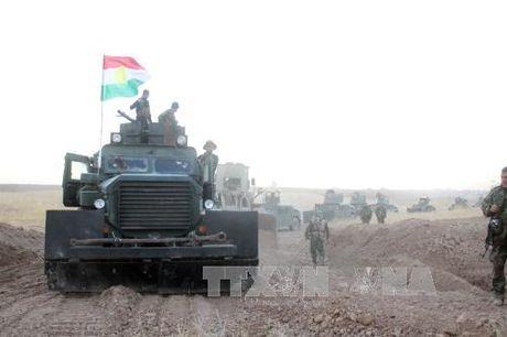 Nga huong ve tinh trinh sat vu tru den Mosul - Anh 1