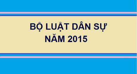 Toan van Bo Luat Dan su 2015, co hieu luc tu ngay 1/1/2017 - Anh 1
