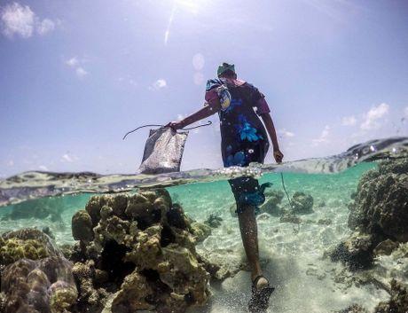 Nhung tho san bach tuoc o Zanzibar - Anh 1