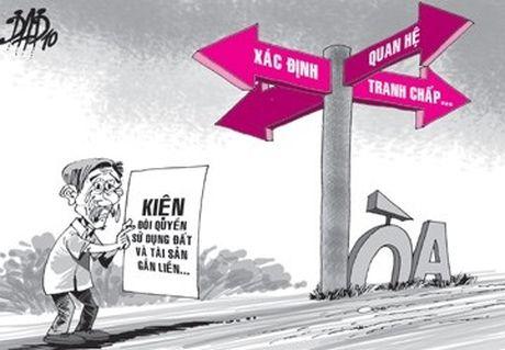 Ky Anh, Ha Tinh: Hon 10 nam go cua 'quan' doi lai dat - Anh 1