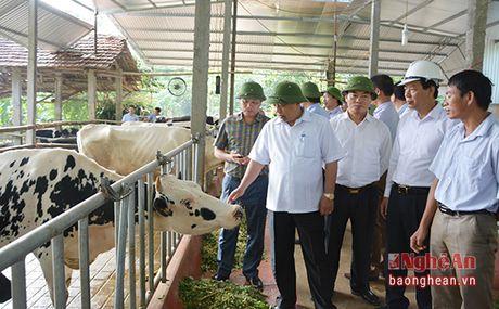 Chu tich UBND tinh kiem tra cong trinh, du an trong diem tai Thai Hoa - Anh 3