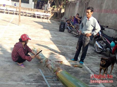 Doc dao tro leo chuoi cua phu nu Dien Chau - Anh 1