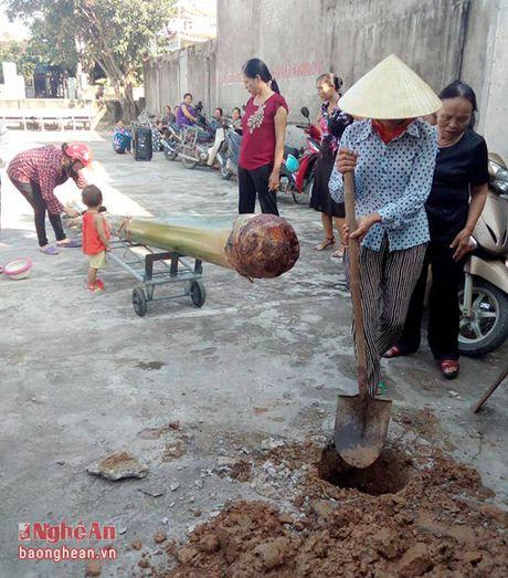 Doc dao tro leo chuoi cua phu nu Dien Chau - Anh 2