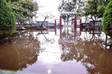 Quang Tri: Hoc sinh vung ngap lut tro lai truong - Anh 3