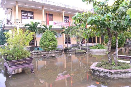 Quang Tri: Hoc sinh vung ngap lut tro lai truong - Anh 7