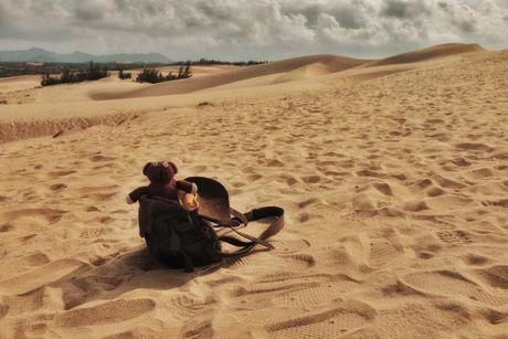 Chang trai dua gau Teddy di xuyen Viet - Anh 14