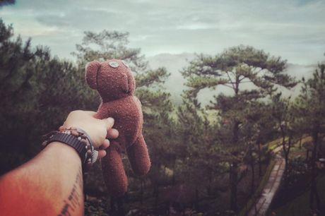 Chang trai dua gau Teddy di xuyen Viet - Anh 15