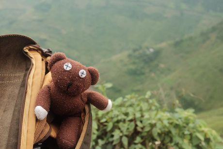 Chang trai dua gau Teddy di xuyen Viet - Anh 1
