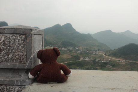 Chang trai dua gau Teddy di xuyen Viet - Anh 2