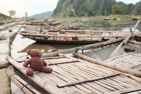 Chang trai dua gau Teddy di xuyen Viet - Anh 3