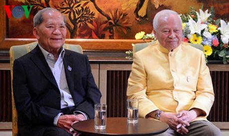 Cuu Thu tuong Thai Lan duoc chi dinh lam quyen Chu tich Hoi dong Co mat - Anh 1