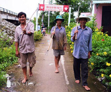 San chuot dong bang chia doc nhat mien Tay - Anh 2