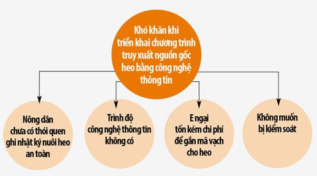 Truy xuat nguon goc heo bang CNTT: Nong ho lach qua cua hep - Anh 2