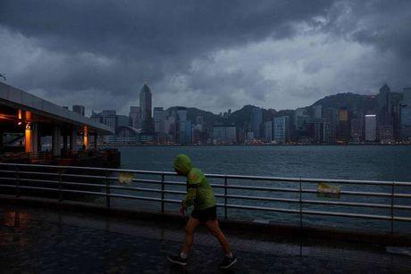 Hong Kong dung moi hoat dong, doi pho bao Haima - Anh 1