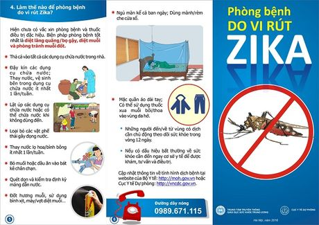 Bo Y te chi thi ve phong, chong benh do vi rut Zika va sot xuat huyet - Anh 4