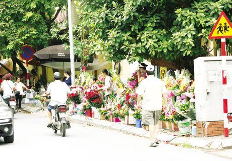 Hoa lan duong, tran via he trong Ngay Phu nu Viet Nam - Anh 5