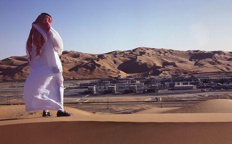 Saudi Arabia canh bao tinh trang cong chuc lam 1 gio/ngay - Anh 1