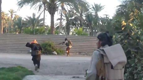 Iraq chan dung vu tan cong dien cuong cua IS o Kirkuk - Anh 1