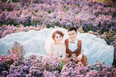 Me man canh dong hoa bao la voi bay cuu xinh xan giua long Ha Noi - Anh 6