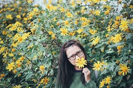 Mot mua hoa da quy o Ba Vi lai den - Anh 9