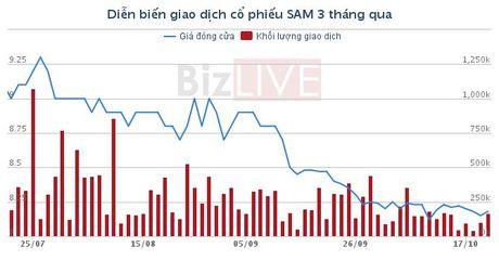SAM: 'Ong chu' cong vien Dam Sen mua ban chui hon 1,3 trieu co phieu - Anh 1