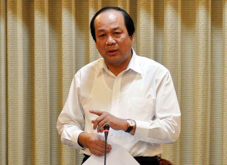Bo truong Mai Tien Dung: 'Khong the noi danh nhan vien san bay la chuyen nho' - Anh 1