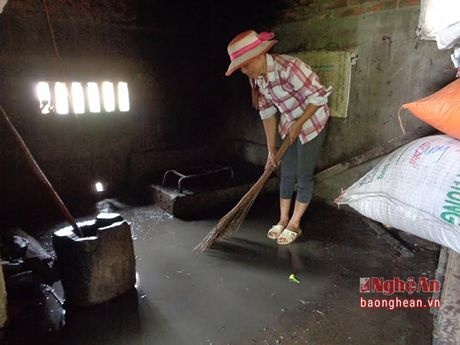 Hung Nguyen: Tap trung xu ly moi truong vung ngap nang - Anh 1