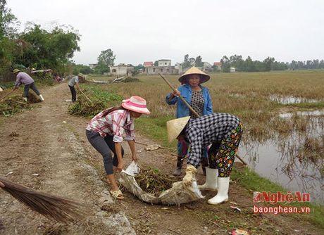 Hung Nguyen: Tap trung xu ly moi truong vung ngap nang - Anh 2