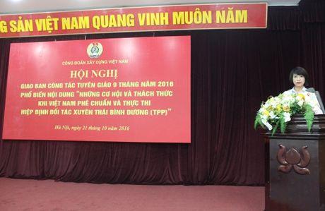 CD Xay dung VN: Tren 2,6 ti dong ung ho dong bao vung lu lut mien Trung - Anh 2