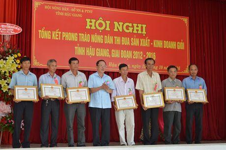 Hau Giang: Tren 50.000 ho nong dan san xuat, kinh doanh gioi - Anh 1