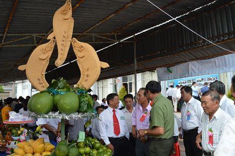 Hau Giang: Tren 50.000 ho nong dan san xuat, kinh doanh gioi - Anh 2