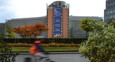 EU khong trung phat Nga ve Syria vi so? - Anh 1