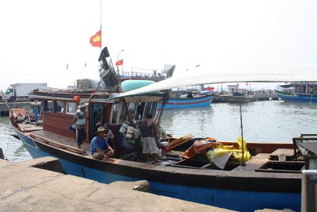 Hue: Nhung ngu dan dau tien nhan duoc tien boi thuong tu Formosa - Anh 2